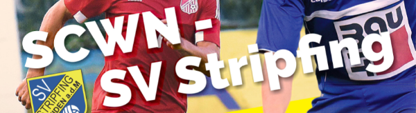 Nächstes Heimspiel: SC Wiener Neustadt gegen den SV Stripfing